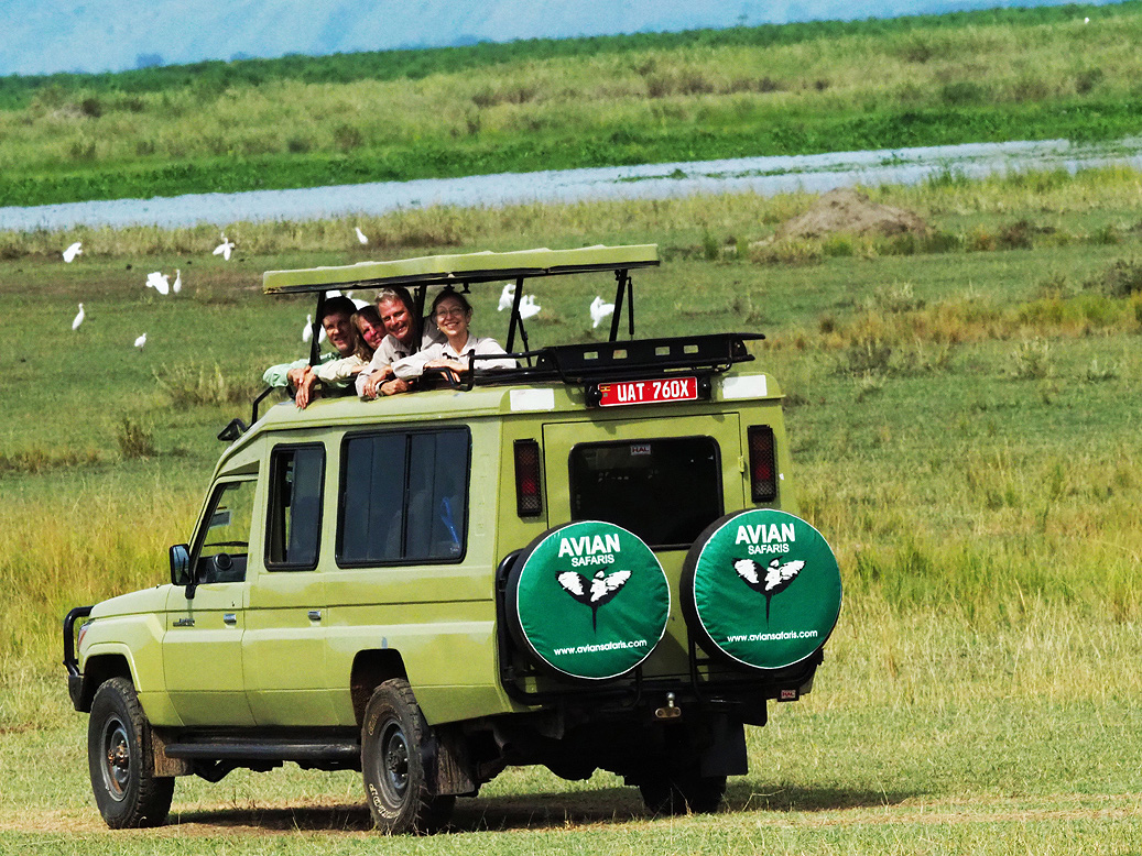 Guided Birding Tours Kenya
